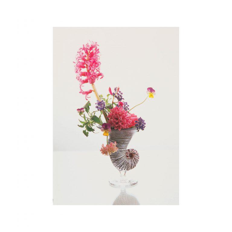 假屋崎省吾オリジナル ポストカード6枚セット(春1)