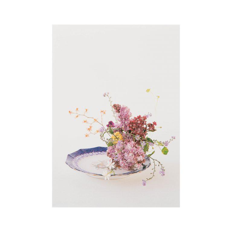 假屋崎省吾オリジナル ポストカード6枚セット(春2)