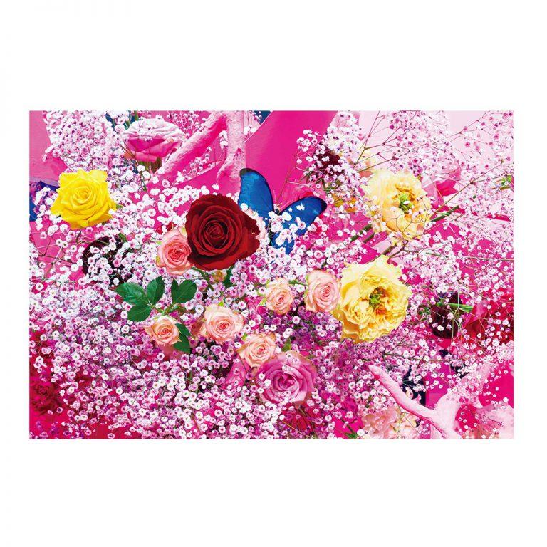 假屋崎省吾オリジナル ポストカード4枚(大作1)